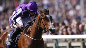Minding took last year's 1000 Guineas and Oaks