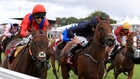 Take Cover blows rivals away in King George Stakes