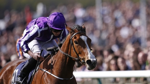 Minding's plans have been put on hold