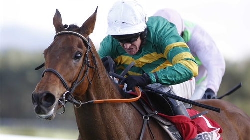 Geraghty will be watching Cheltenham from home on television