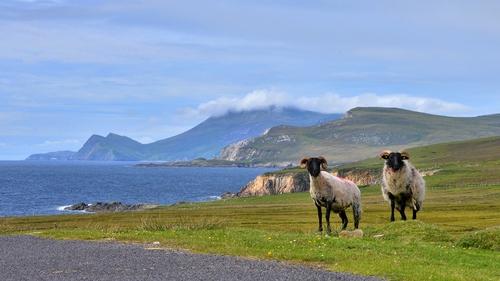 Strolling along the Atlantic Drive, Achill (Pic: Robert Riddell)