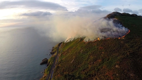 The gorse fire began early this morning