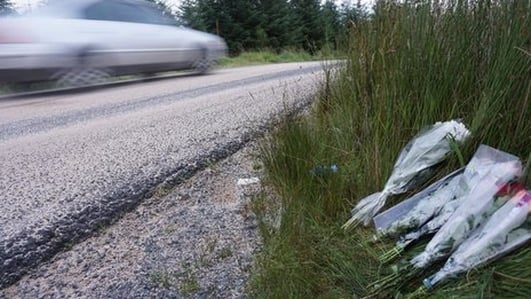 Europe bids to make today a 'day without road deaths'