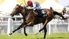 Qemah and Jet Setting on course for Matron Stakes