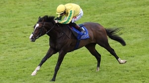 Sea Wolf took the feature at the Curragh
