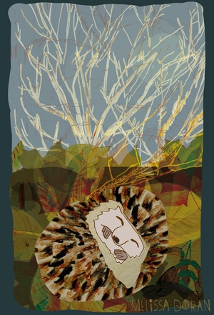 Naturama Hedgehog Hibernating © Melissa Doran