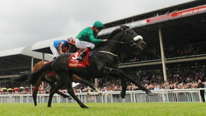 Harzand could take on the field at the Arc