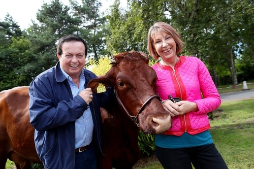 The Irish version of the Oscars, the Ploughing Championship is an annual event for not only the farming and agricultural communities of Ireland, but for almost 300,000 people who want to experience country life at its best