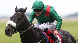 Pat Smullen and Harzand