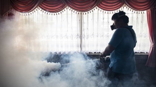 Zika: the United States recommend men to wait 6 months before breeding