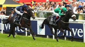 Harzand (R) won the Epsom and Irish derbies this year