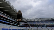 Croke Park lies in wait for the All-Ireland football final