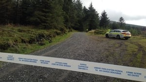 The body of the 64-year-old man was discovered in a wooded area at Ballinascorney Hill near Brittas in Co Dublin