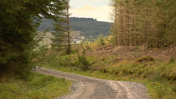 Dispute over land linked to murder in Dublin mountains