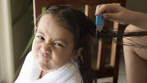 The letters are going home in school bags all over the country - head lice are back. How do you prevent your children from getting them and how do you get rid once the scratching starts?