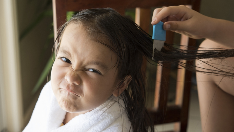 Headlice: Everything You (Don\'t) Want to Know!
