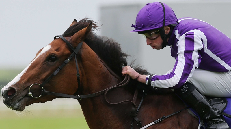 Minding coasted home for Ryan Moore