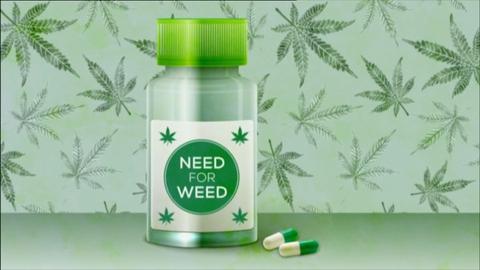 Prime Time Extras: Medical Marijuana