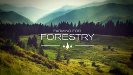 Prime Time Extras: Farming for Forestry