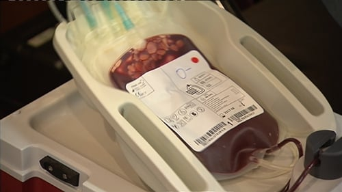 The IBTS said it had not imported blood in bulk since the late 1990s