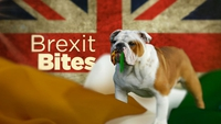 Prime Time Extras: Brexit