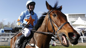 Un De Sceaux part-owner Colm O'Connell: 'There are races in France we'll be looking at. He really seems to suit Auteuil and they are so valuable.'