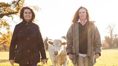 Each week on RTÉ Food, we meet one of the nation's hard-working Irish food producers to see how they do what they do so well. This week, we're chatting to Dorene Mallon from The Farmer's Daughter.