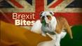 Prime Time Web: Brexit bites