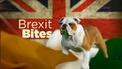 Brexit bites