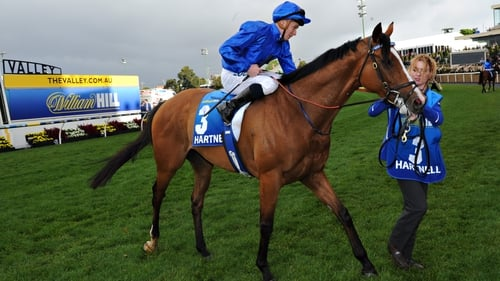 Hartnell could end Godolphin's wait for the Emirates Melbourne Cup