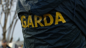 "The State's corporate enforcement watchdog said it was ""severely hampered"" in carrying out white collar investigations as a result of having less than its required statutory complement of garda"