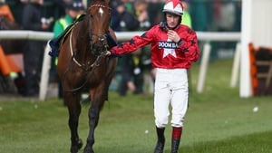 Another Haydock success for The New One