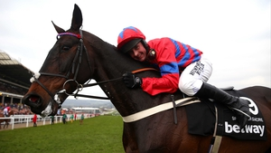 Sprinter Sacre and Nico de Boinville after reclaiming the Queen Mother Champion Chase at Cheltenham in March