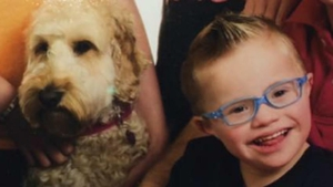 It was Teddy to the rescue for one five-year-old boy this year