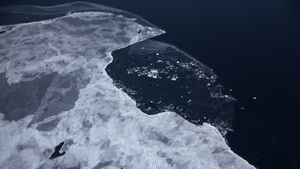 Sea ice floats near the coast of west Antartica