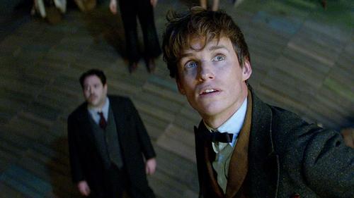 Eddie Redmayne stars as Newt Scamander, a shy and socially awkward wizard