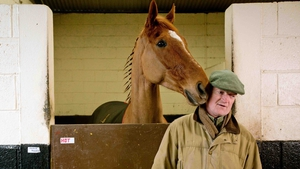 Willie Mullins can gain some ground on Gordon Elliott should Annie Power perform at Punchestown