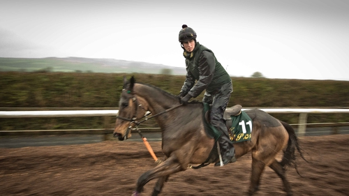 Douvan on the gallops at Willie Mullins' yard