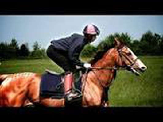Race Jockey Training