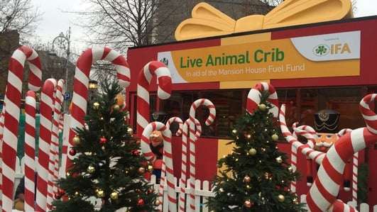 Live animal crib opens in Dublin today