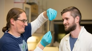 Scientists Jonathan Coleman and Conor Boland of the AMBER centre at Trinity (credit: AMBER/TCD)