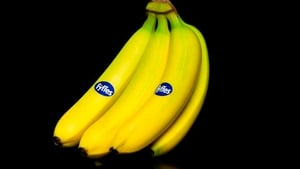 Fyffes said its staff, customers, suppliers and joint venture partners will benefit from being part of an enlarged group