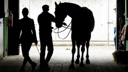 Racing workers' employment rights | RTÉ News