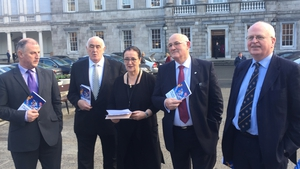 A group of independent Senators said the Seanad will become a 'Brexit Chamber of Inquiry'