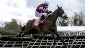 Apple's Jade meets Limini in the Quevega Hurdle at Punchestown
