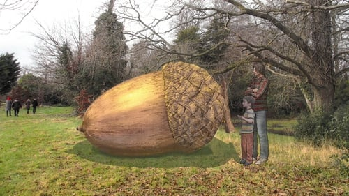 The 'People's Acorn' sculpture will be unveiled in November 2017
