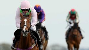 Faugheen hasn't raced since winning the Irish Champion Hurdle at Leopardstown last year