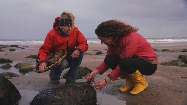 Eco Eye Tuesday 10th on RTÉ One at 7:00pm