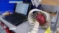 Nine News (Web): Irish researchers develop robotic device to help treat heart failure