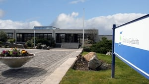 The employment base in Gaeltacht companies has reached its highest level in seven years